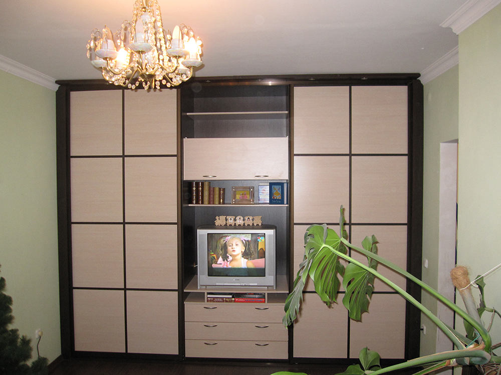 встроенная мебель для гостиной фото