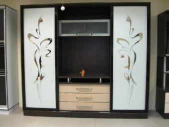 Шкаф купе дизайн с пескоструйным рисунком